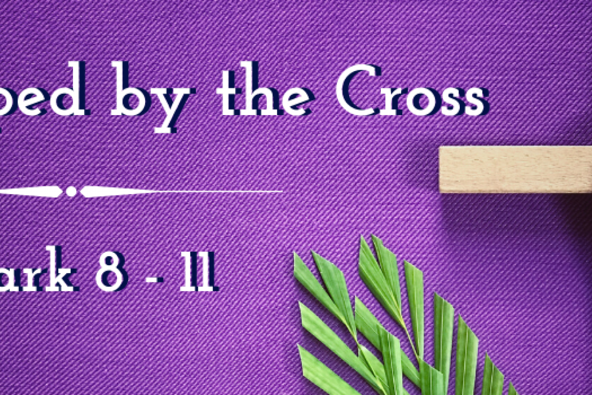 Shaped by the Cross: A Heart for God's Mission