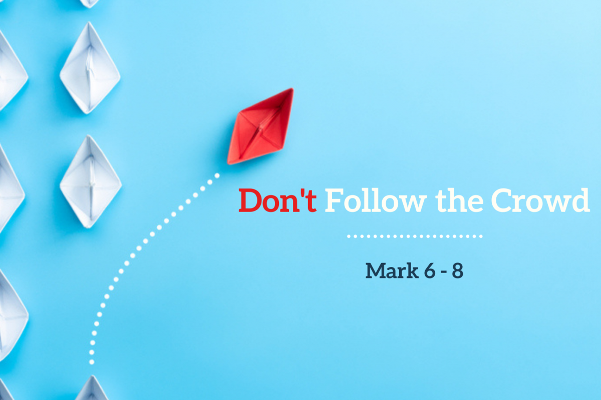 Don't Follow the Crowd: Confusion vs Confession