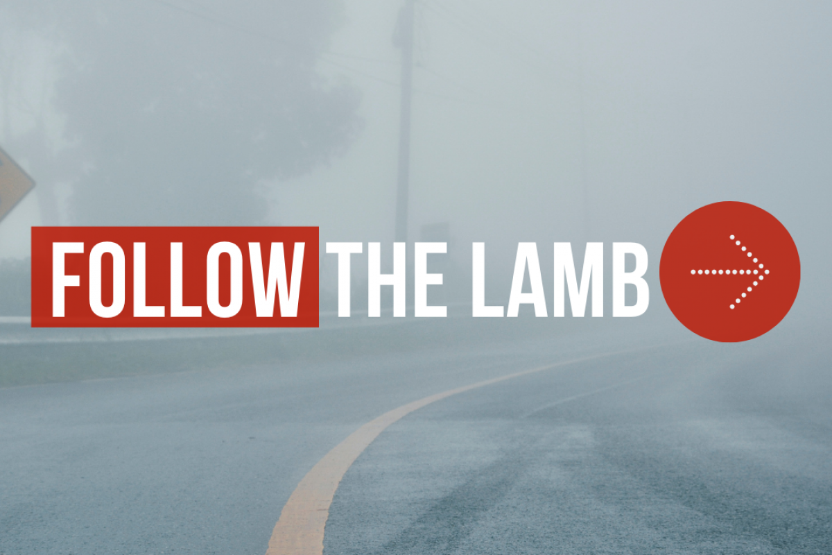 Follow the Lamb: An Unusual Ending... Or Beginning